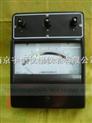 T19-V交直流电压表/伏特表