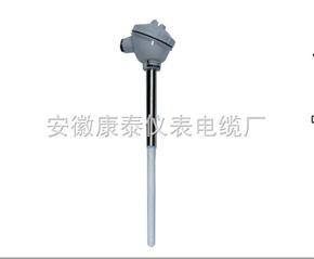 WZP2F-130防腐熱電阻