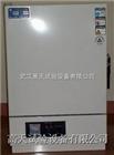 武漢大小型工業烤箱
