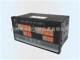 數字智能雙回路溫度/液位測控儀