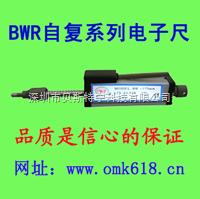 BWR-微型自復位電子尺