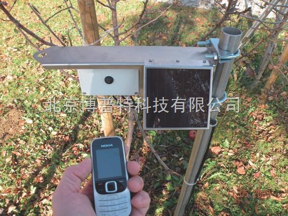 土壤墒情监测仪SW3000价格