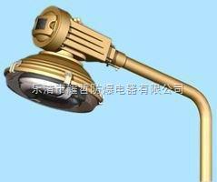 SBR6120 SBR6120 SBR6120 SBR6120 SBR6120防水防尘道路灯