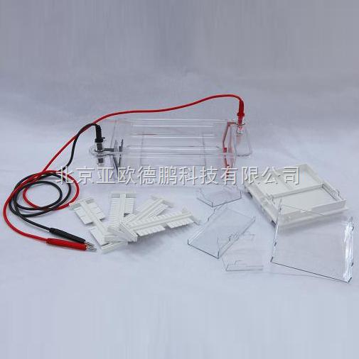 DP/DYCP-31DN-瓊脂糖水平電泳儀/瓊脂糖水平電泳槽/電泳儀