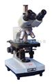 三目生物顯微鏡/生物顯微鏡