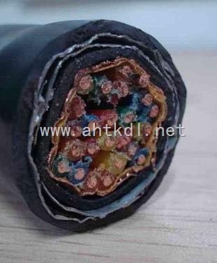 低价供应钢带铠装计算机电缆