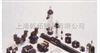 -大量进口美国ASCO基本功率阀,8320G200MO